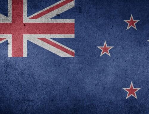 PARO wird in Neuseeland palettieren