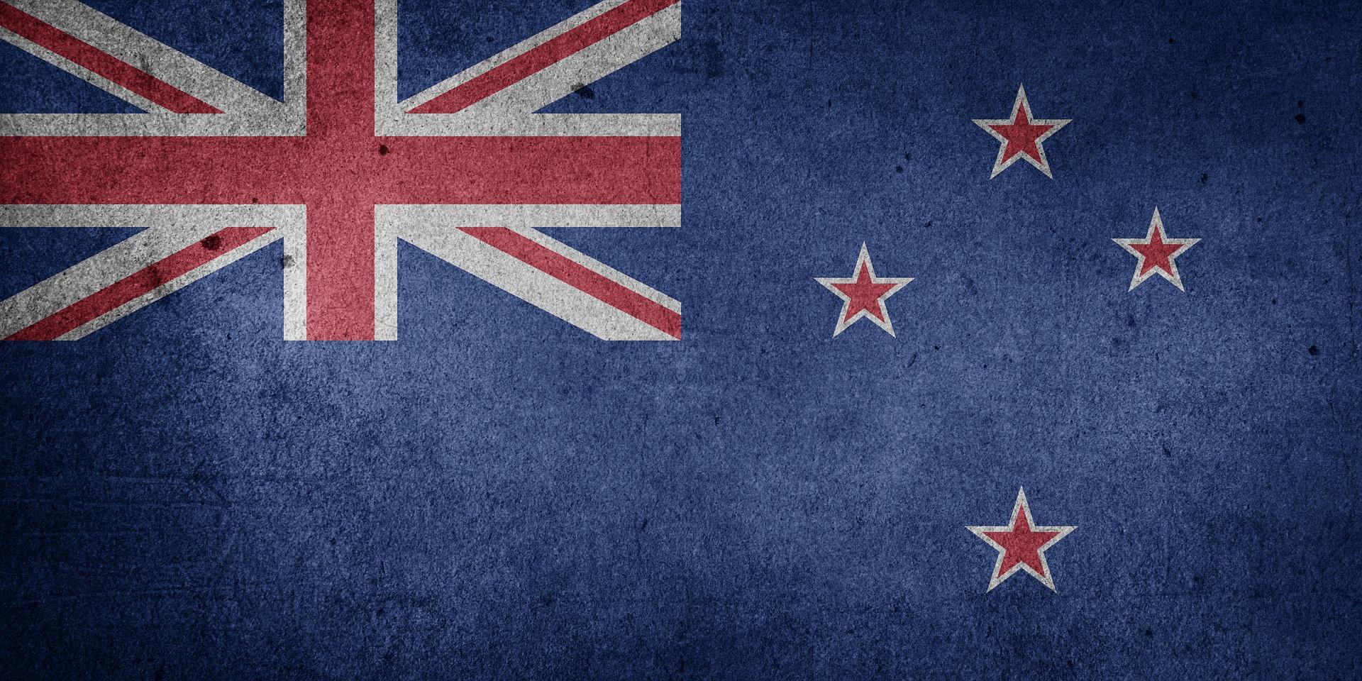 Bald stehen drei PAROs in Neuseeland